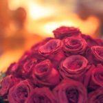花言葉で選ぶ!バレンタインに男性から女性に贈るの定番のバラの秘密