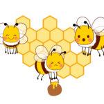 ミツバチの恵み「とろり」の口コミや評判は?購入前に知りたい情報!